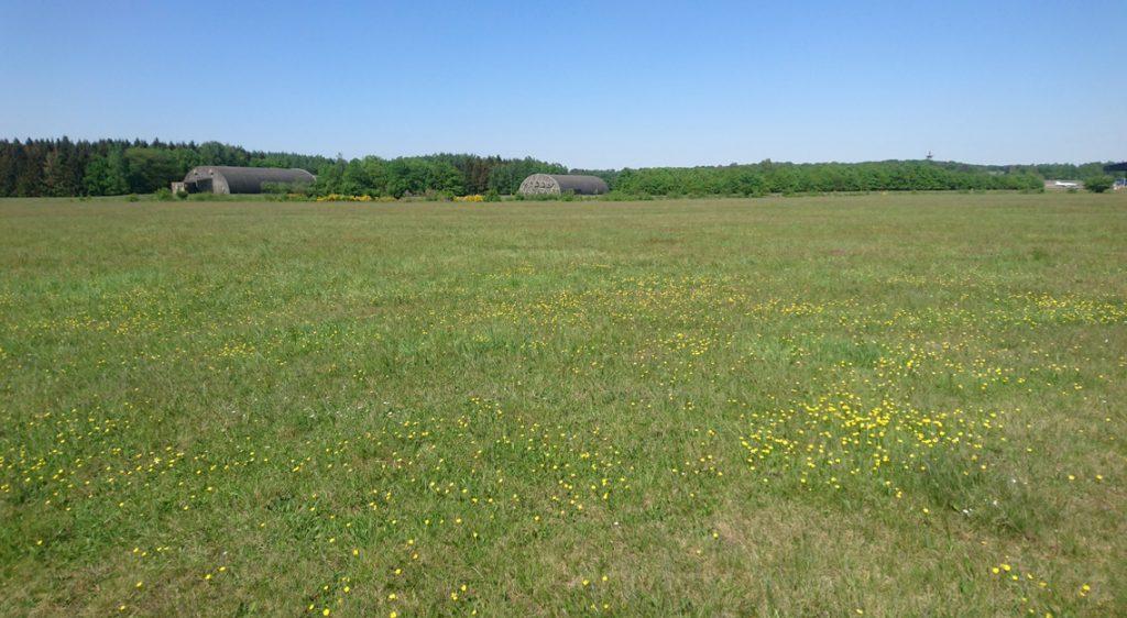 Heischrale graslanden Soesterberg
